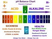 ph balanced diet