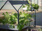 Ikea Indoor Food Growing System