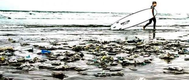 Adidas Ocean Plastic Shoes Amazon